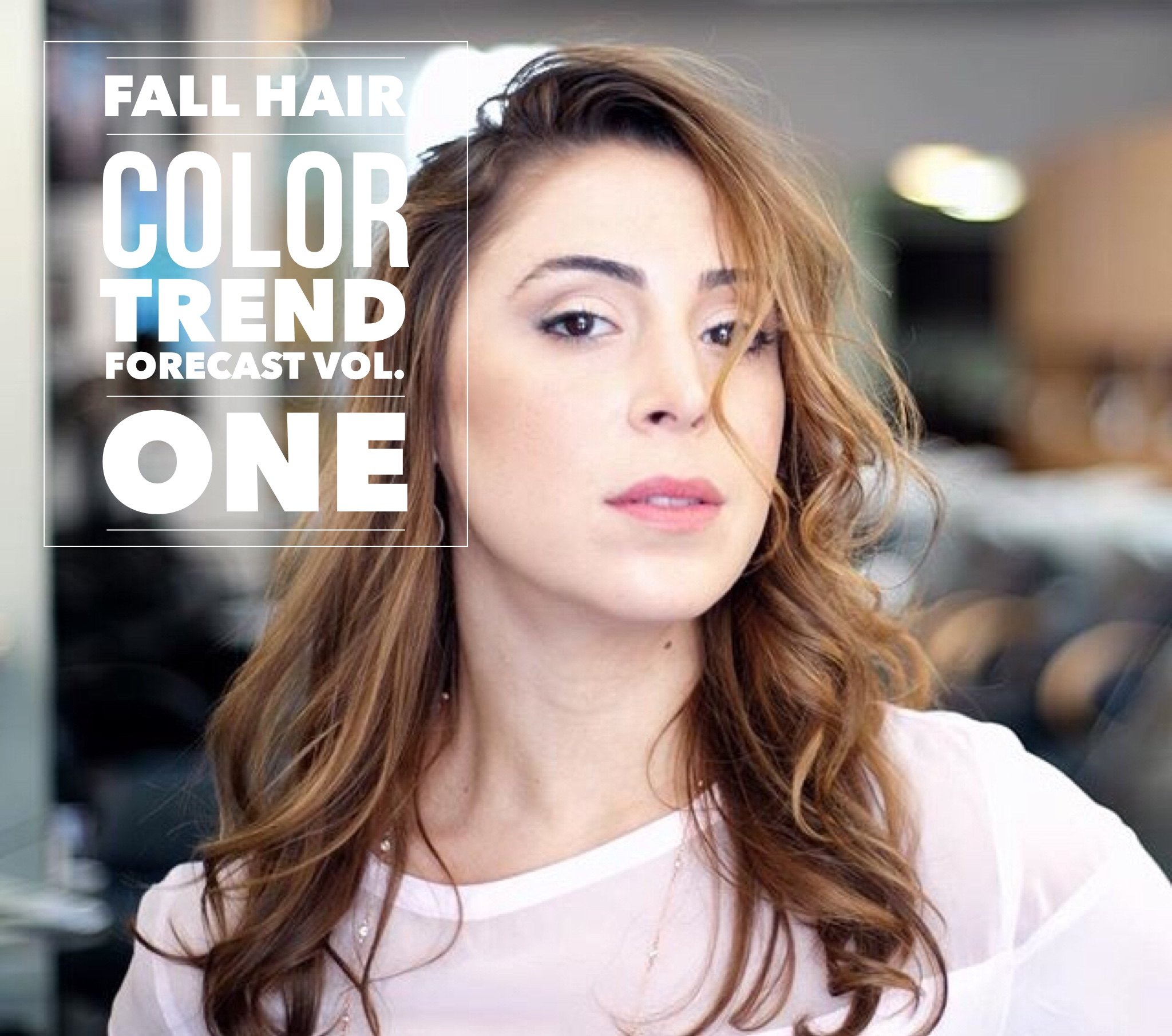 Master Colorist's Fall Hair Color Trend Forecast Vol. One