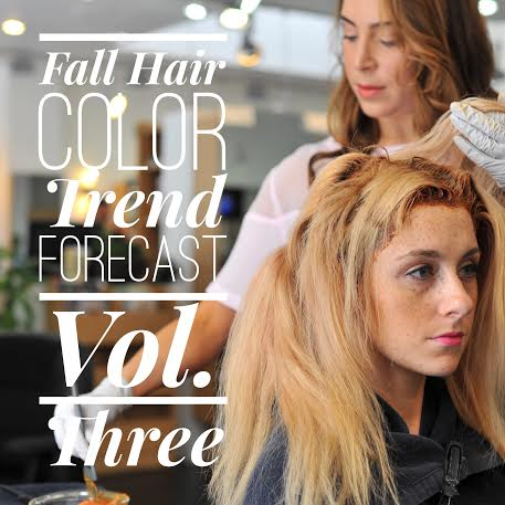 Master Colorist's Fall Hair Color Trend Forecast Vol. Three