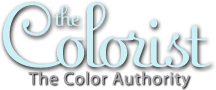 celebrity hair colorist renee taglia